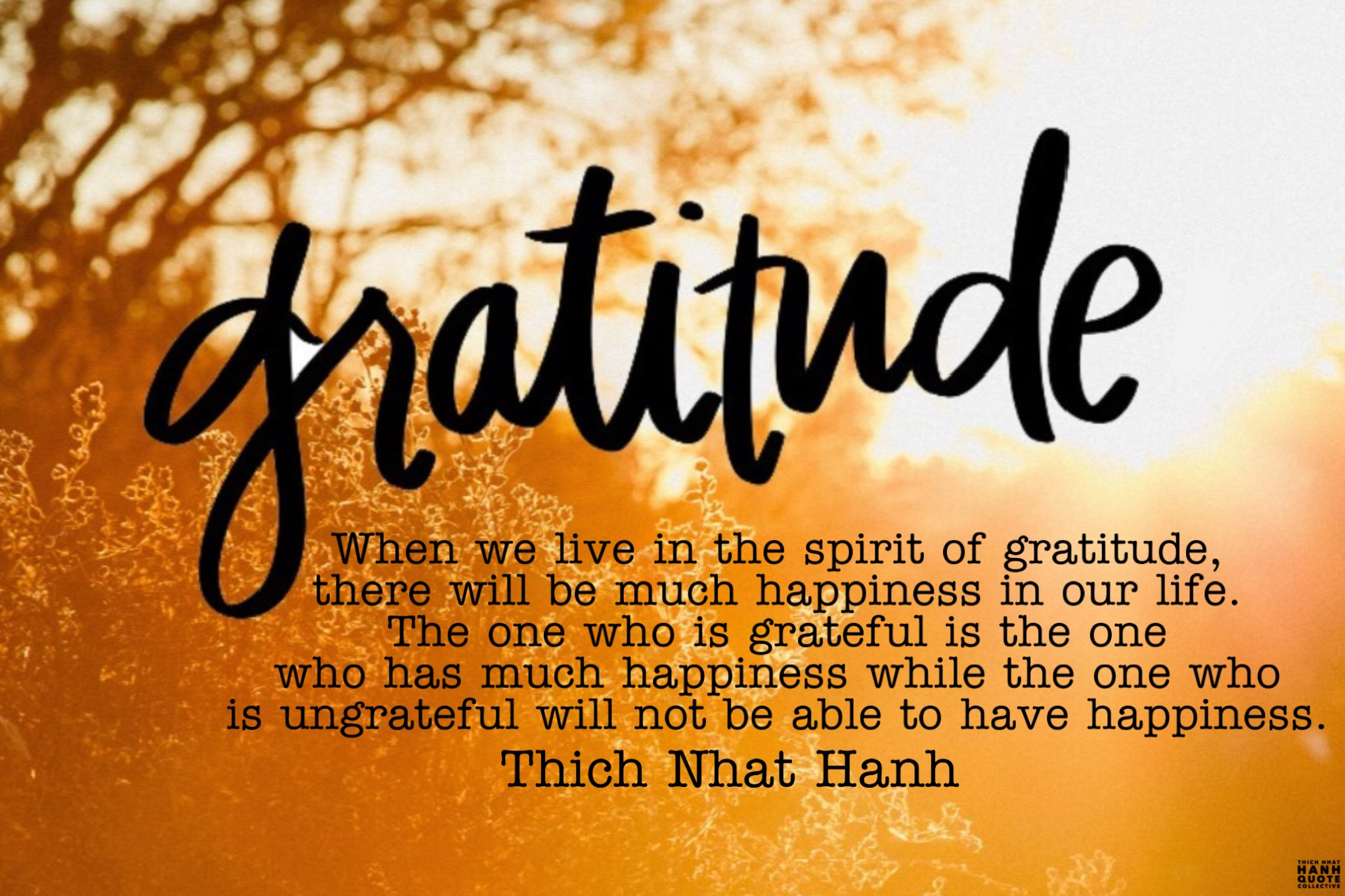 Gratitude – Thich Nhat Hanh   Thich Nhat Hanh Quote Collectiveॐ